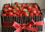 Rich chocolate cake with red berries and chocolate cigarillos